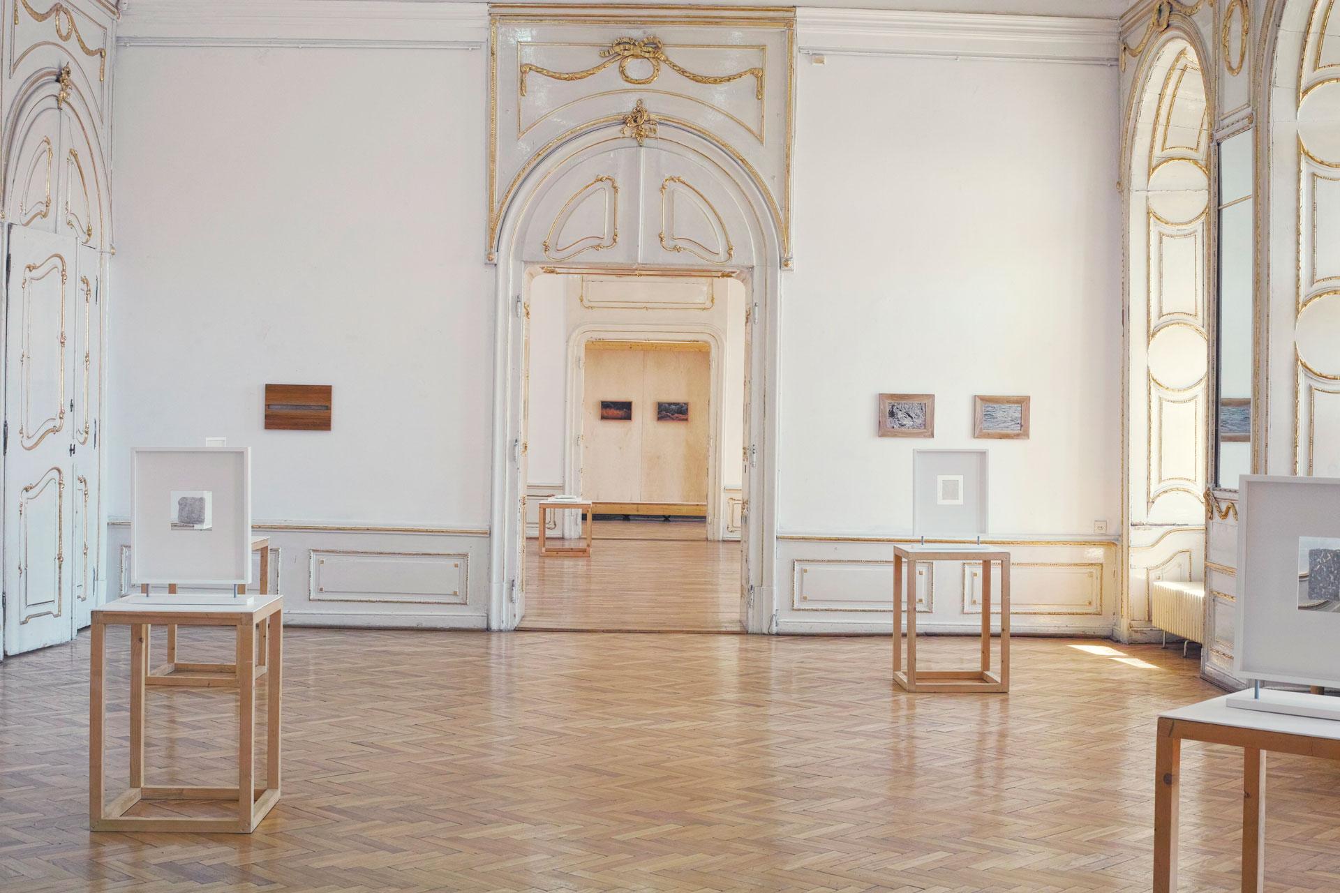Mihai Platica Muzeul Arta Cluj